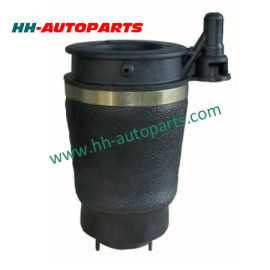 Ford Air Spring 6L1Z3C199AA