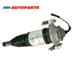 VW Air Suspension Shock Absorber 7P6616019J, 7P6616019H, 7P6616019G, 7P6616019K